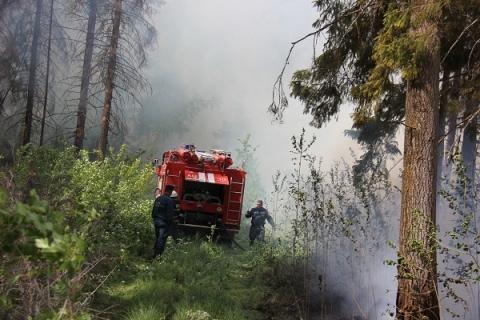 Третий класс пожарной опасности установился в Нижнем Новгороде