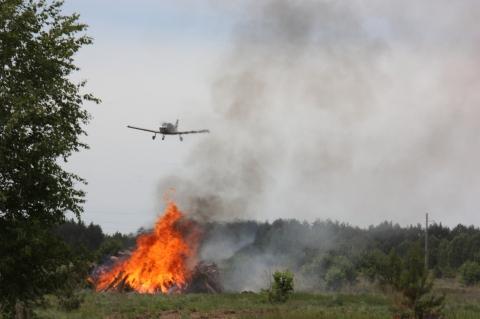 Два лесных пожара потушили в Нижегородской области за минувшие сутки
