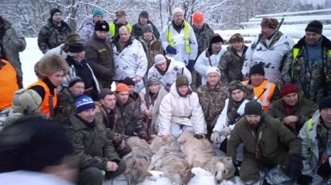 В Уренском районе 86 охотников убили стаю волков