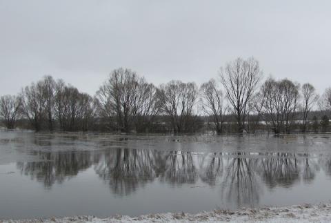 Пять низководных мостов затопило в Нижегородской области 4 апреля