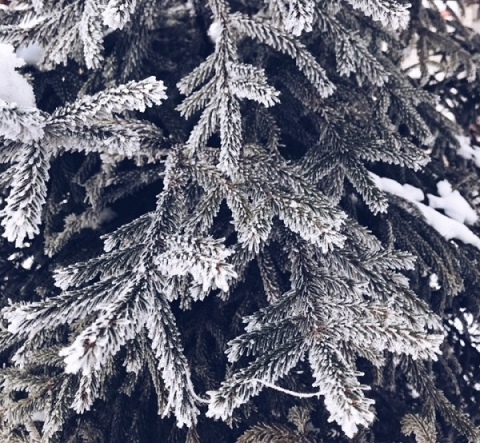 Аномальные морозы ожидаются в Нижегородской области с 4 декабря