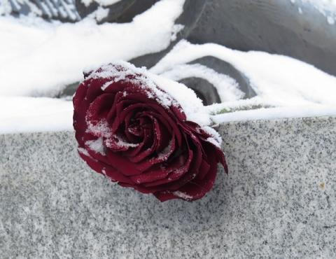 Пособие на погребение проиндексировано в Нижегородской области с 1 февраля
