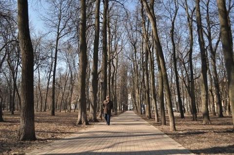 Программа озеленения парка «Швейцария» в Нижнем Новгороде будет скорректирована