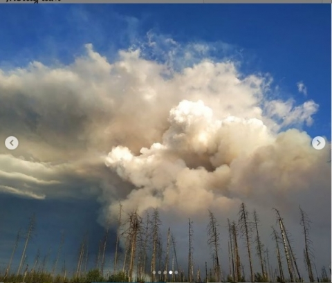 500 пожарных сдерживают огонь в лесах рядом с Саровом