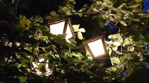 Световой потолок раскинется над Большой Покровской в Нижнем Новгороде