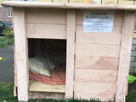 Сотрудники муниципального учреждения в Сарове лишили будки бездомного пса