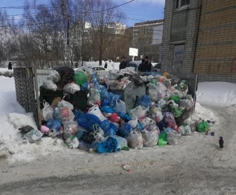 Регоператоры назвали причины «мусорного армагеддона» в Нижнем Новгороде