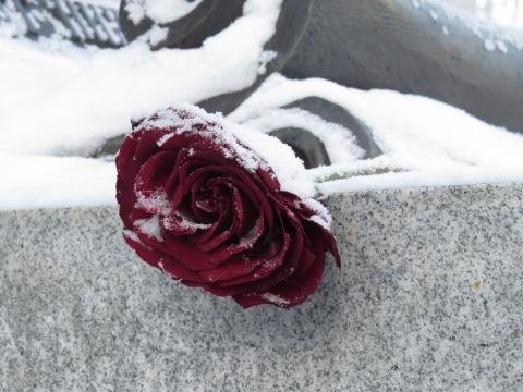 Родные простились с застреленной мужем нижегородкой