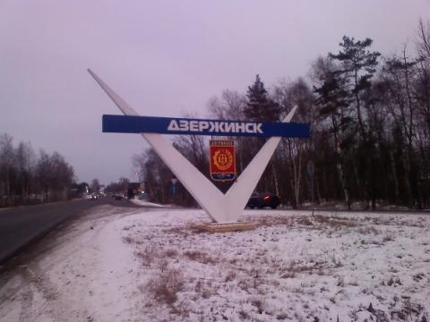Росприроднадзор начал проверку из-за обнаружения синих собак в Дзержинске