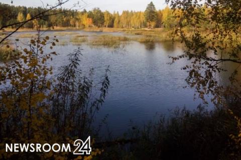 Профильные министерства опровергли вырубку лесов и добычу песка у Мухтоловских озер
