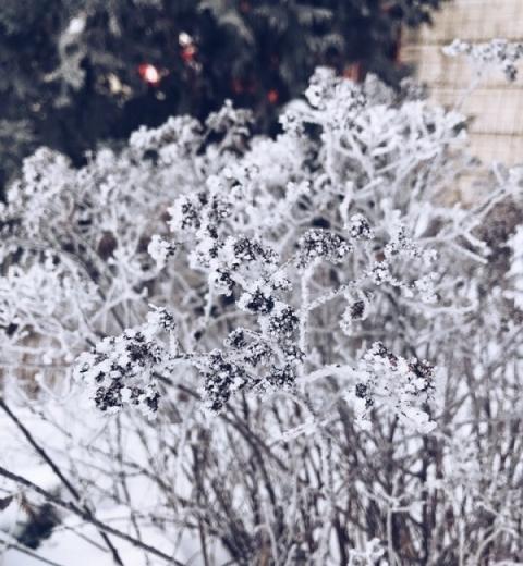 Мороз до -36°С ожидается в Нижегородской области 18 января