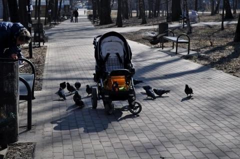 Бросившей коляску с ребенком нижегородке грозит до года тюрьмы