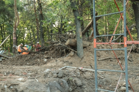 Деревья у ограды парка «Швейцария» в Нижнем Новгороде планируют вырубить