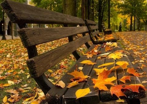 «Бабья осень» придёт в Нижний Новгород с 26 октября