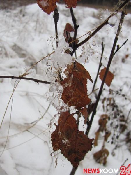 Похолодание и снегопады сменят оттепель в Нижнем Новгороде на этой неделе