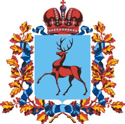 Коронавирус не нашли за сутки в 30 муниципалитетах Нижегородской области
