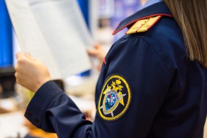 СК начал проверку из-за травмирования ребенка на горке в нижегородском парке