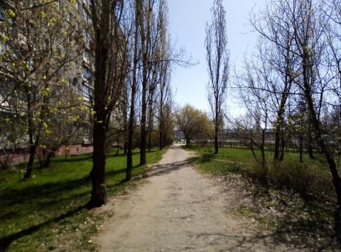 Теплая погода сменится похолоданием в Нижнем Новгороде к концу недели