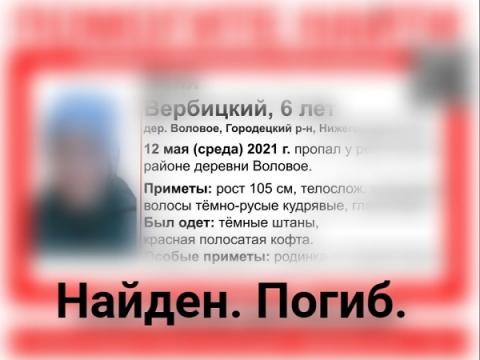 Пропавший у реки в Городецком районе 6-летний мальчик погиб