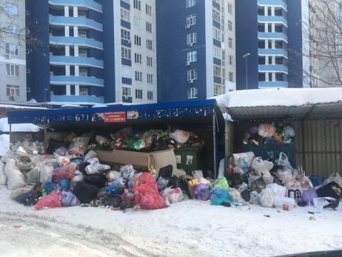 В Нижнем Новгороде жители  пожаловались на мусорный «армагеддон»