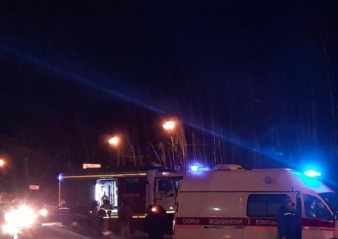 Пешеход погиб на Мызинском мосту в Нижнем Новгороде 19 апреля