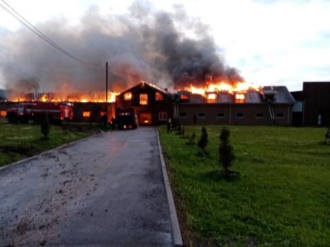 Конюшня загорелась вечером 8 июня в Дальнеконстантиновском районе
