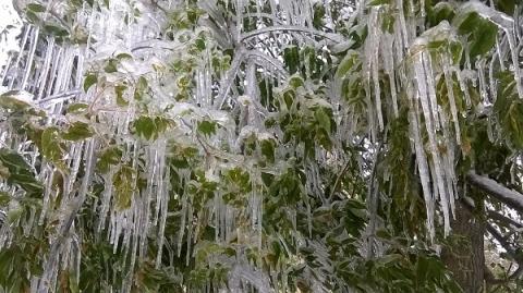 Ледяной дождь надвигается на Нижегородскую область