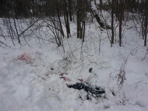 Нижегородцы сообщают о двух погибших при стрельбе на Суетинской