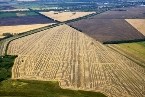 Площадь сельхозземель в Нижегородской области увеличили на 25 тыс. гектаров