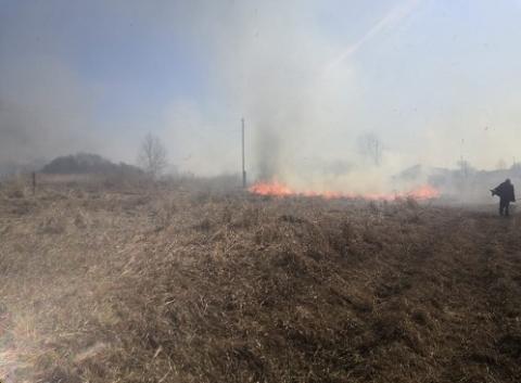 Огонь с сухой травы перекинулся на дома в Большеболдинском районе 18 апреля