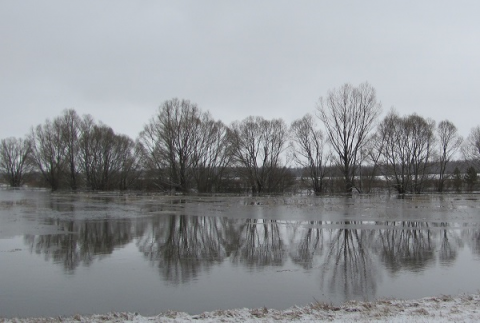19 муниципалитетов Нижегородской области могут оказаться в зоне подтопления весной 2021 года