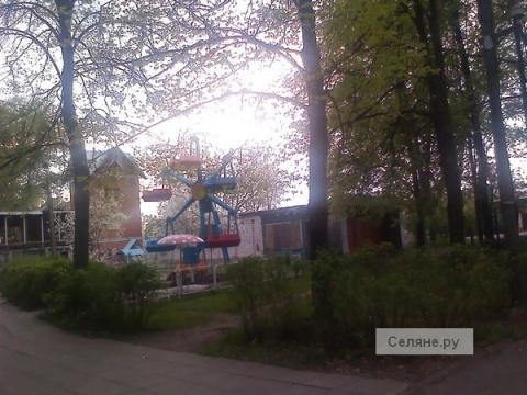 Высмеянный комиком Мусагалиевым парк в Павлове благоустроят в 2022 году