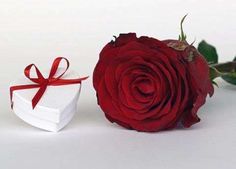 Лучшие подарки на 8 марта – цветы и бриллианты